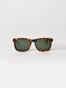 Ames Polarized Sunglasses