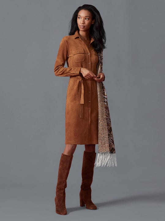 Haarlem Faux Suede Dress